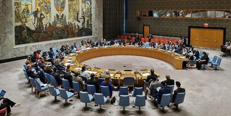 درخواست نماینده فرانسه در شورای امنیت درباره ادلب