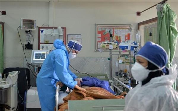 افزایش مبتلایان به کرونا در کشور؛ 2441 بیمار بستری شدند